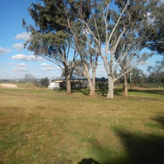 Youcamp Pine View Camping And Farmstay
