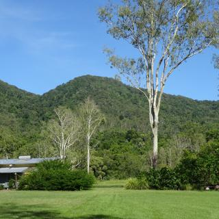 Sweetwater Lodge  2472 Mossman Mount Molloy Road, Julatten QLD 4871, Australia