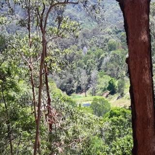Tweed Coast Wilderness Camp. 986 Reserve Creek Road, Reserve Creek NSW, Australia