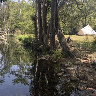 A Campsite on Crystal Creek